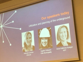 ITACUS co-chair presents at NFF evening forum in Oslo